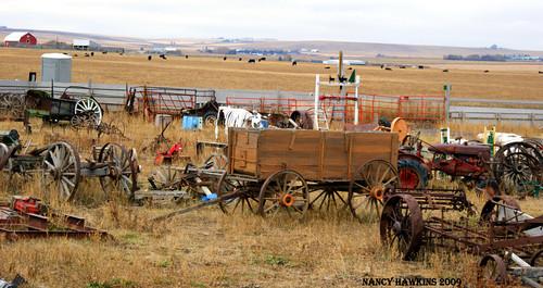 Wagon graveyard