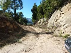 Départ de la piste de Punta Radichella à la bifurcation depuis la branche vers Bocca di Sadica