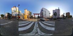 Huge Torii (Shrine Gate)