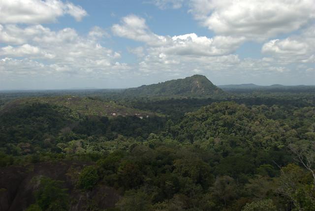 Mt. Volzburg Suriname