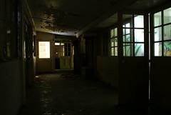 Inside one of Harperbury Hospital's derelict wards.