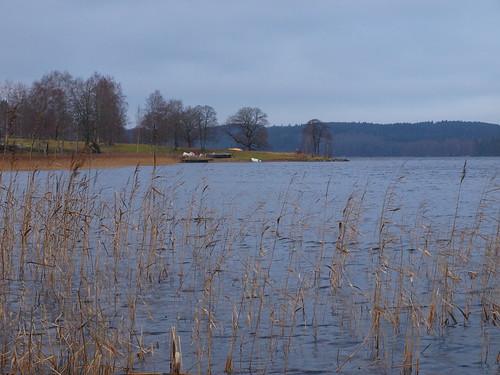 lake clouds forest mos landscape olympus skog höst träd landskap sjö moln e520 olympuse520 öresjön mosstrand peternyhlén