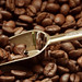 Coffee smells like freshly ground heaven.  ~Jessi Lane Adams