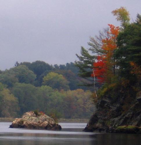 trees water rock river maine brunswick androscoggin topsham foliag