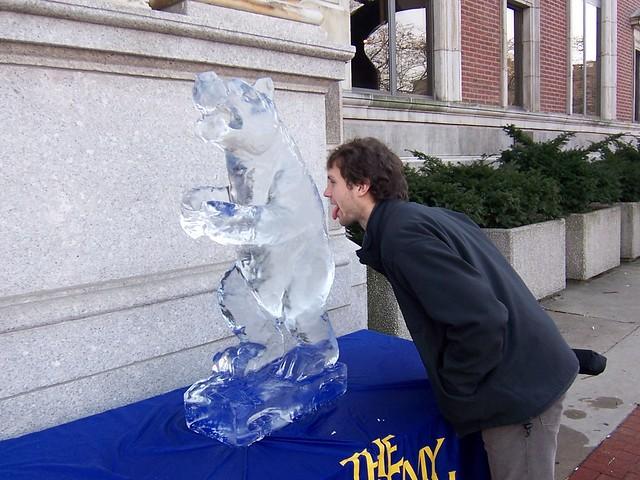 ian licking an ice polar bear