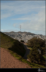 Bernal Picks-0123
