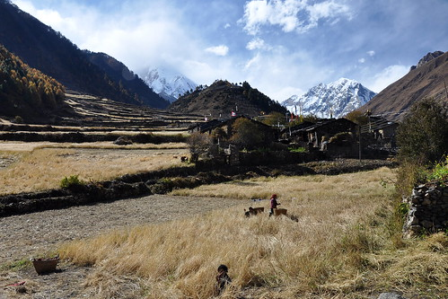 travel nepal mountains field work trek nikon valley circuit d90 manaslu 18105vr
