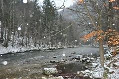 Esimene lumi 2009