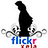 the Flickr (Xela) group icon
