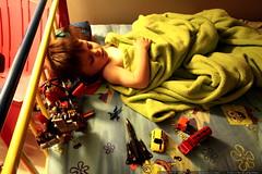 sequoia alseep with an ensemble of toys