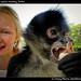 Dawn and spider monkey, Belize