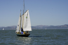 California-sailing13