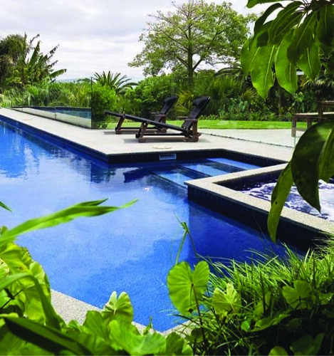 Habitats Landscapes Residential Swimming Pool Design New Zealand 26