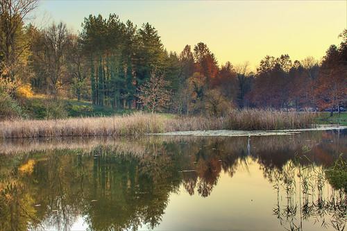 autumn trees sun geotagged scenery view bulgaria hdr ruse teketo kmtoin geo:lat=43850152 geo:lon=26086081