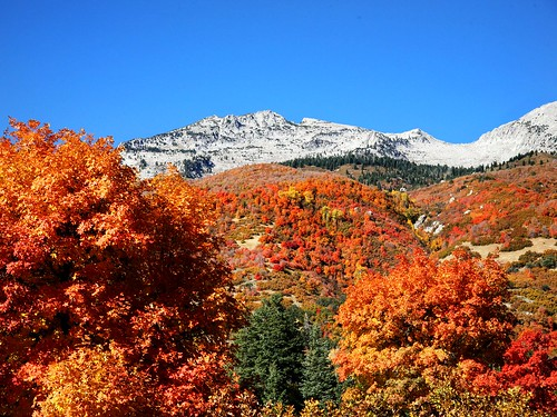 Lone Peak Autumn