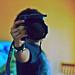 camera head by Alyfaye2016