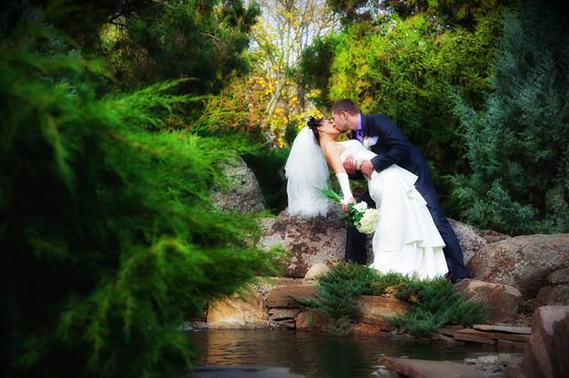 Wedding: Denis & Alina
