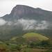 Iema - Área de proteção ambiental de Goiapaba-açú