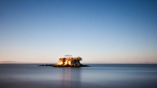 Lone tree island