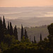 Good morning Tuscany