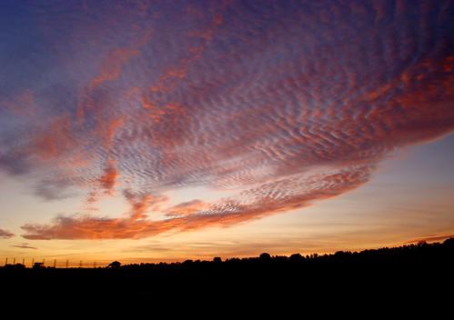 pink blue trees sunset red sky orange portugal yellow azul clouds landscape geotagged sundown laranja silhouettes rosa céu vermelho amarelo pôrdosol nuvens alentejo árvores endoftheday cloudformations patternsinthesky fimdatarde fimdodia ilustrarportugal ubichan geo:lat=38641545 geo:lon=7867498