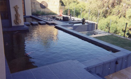 Concrete pond flickr photo sharing for Koi pond next to pool
