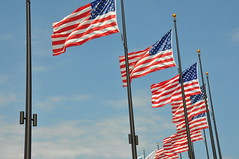 American Flags - Navy Pier Chicago