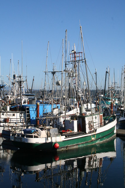 newport oregon fishing fleet flickr photo sharing