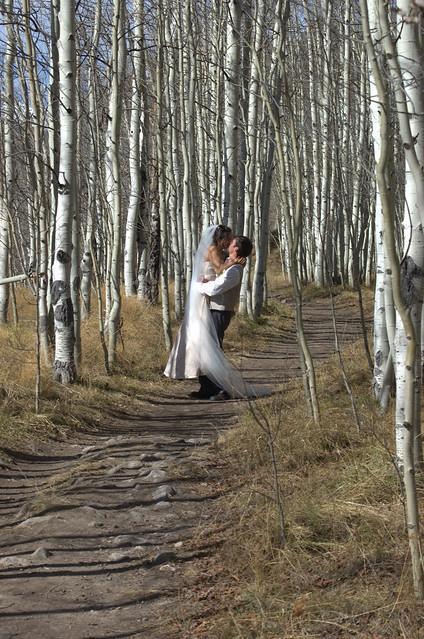 Aspen forest wedding