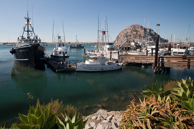 Fishing vessel irenes way makes port in morro bay ca for Morro bay fishing