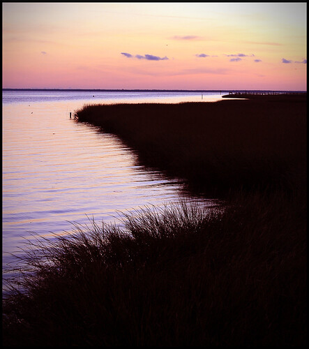 sunset shoreline apalachicola