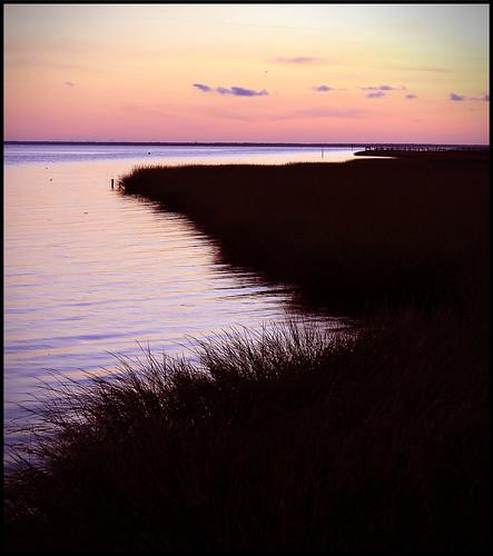 sunset shoreline apalachicola