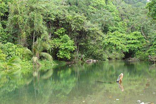 Paysage Parc National Corcovado