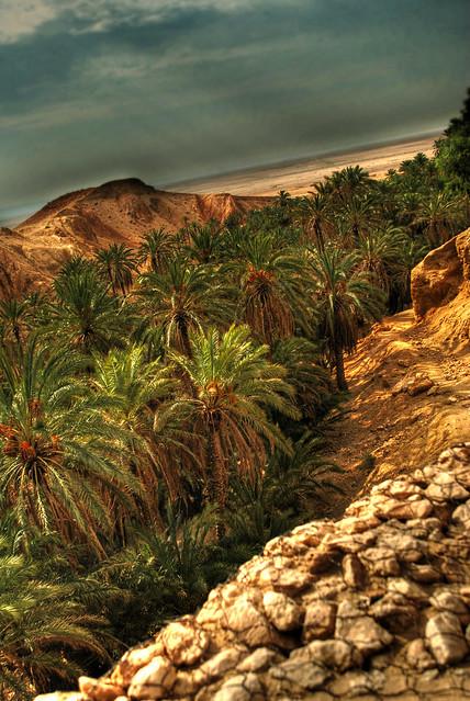 Las maravillas del desierto del Sahara 3909504812_dc1afc847d_z
