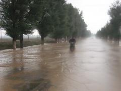 natural disaster, flood, event, disaster,