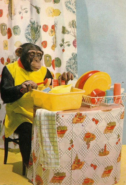 pc chimpansee 1970