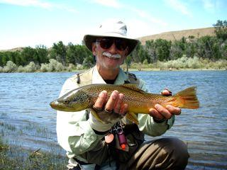 Fly fish addiction fishing bozeman missoula the for Fishing report near me