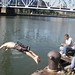 swim the harlem River