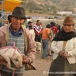 Piglet All Tied Up - Saquisili, Ecuador
