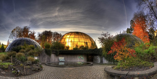 greenhouse domes zurich botanical gardens botanischer garten z rich flickr photo sharing. Black Bedroom Furniture Sets. Home Design Ideas