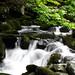 Nasu Kogen 那須高原 - Otome Waterfall 乙女滝