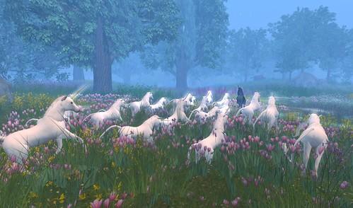 Unicorn in the Dawn