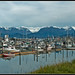 View of the harbor on the Homer Spit - Homer, Alaska