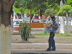 Street Salesman, La Ceiba Central Park
