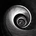 Spiral by Stefan Witte