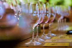 Taste the Wine