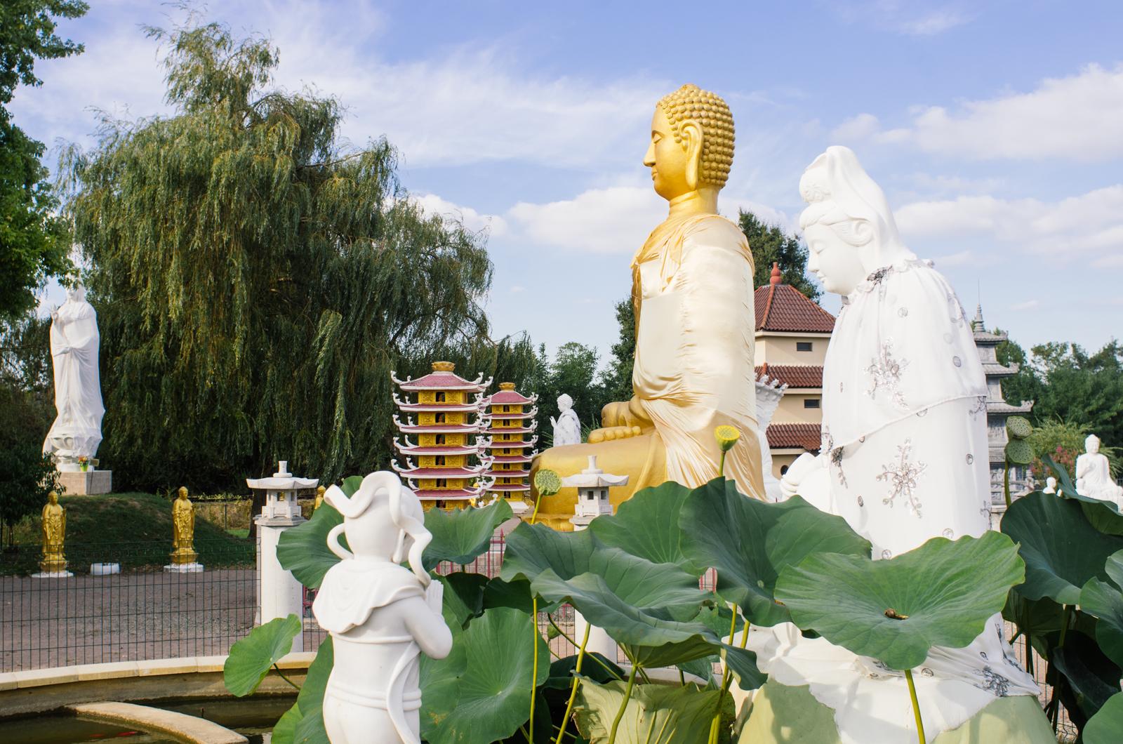 Des pagodes dans le bocage - Carnet de voyage dans l'Allier