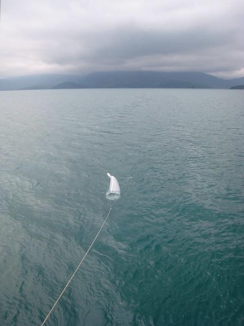 Plankton net behind Tocorimé