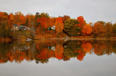 Fall Colors at the cottage