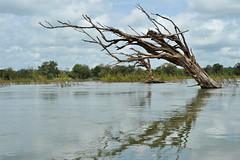 Navigation sur le mékong de Stung Treng jusqu'à la frontière lao